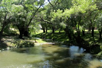 Convocan a municipios, empresas y ambientalistas para proteger el Perucho Verna