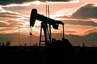 Fuerte repudio de ambientalistas a dos conferencias organizadas por el CGE y la UTN