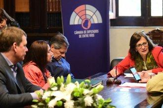 Diputados emitió dictamen sobre proyectos de Educación Vial, RCP y Primeros Auxilios en escuelas