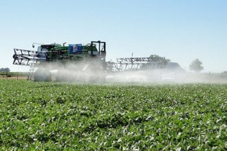 """Regulación de fitosanitarios: """"esta norma es más perjudicial que la de glifosato"""""""