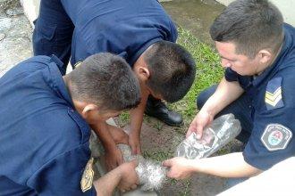 La rescataron de las llamas y le devolvieron la vida con maniobras de RCP