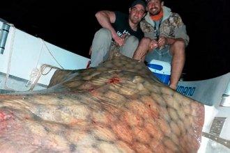 Se fotografiaron junto a una raya de 130 kilos y la devolvieron al río Paraná