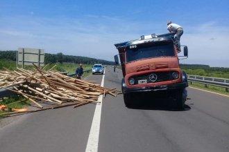 A media mañana en ruta 14, perdió una rueda y despistó un camión cargado de eucaliptus