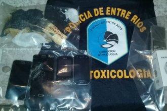 Marihuana, cocaína y creatina: tres detenidos y múltiples elementos secuestrados por narcomenudeo