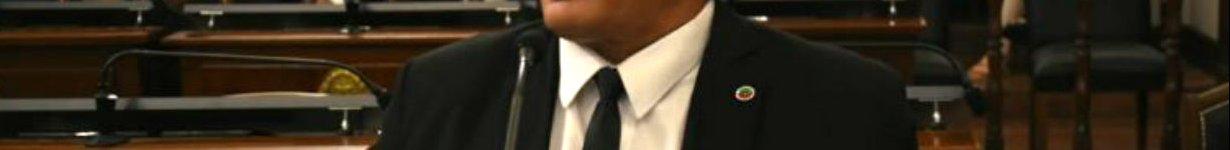 Carbonell, ayer en el Senado (foto: E.R. Ahora).