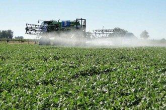 La universidad se suma al debate por la reglamentación de los fitosanitarios