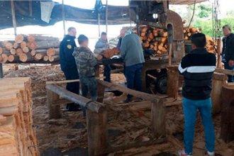 Inspección a aserradero entrerriano: detectaron malas condiciones de higiene y seguridad