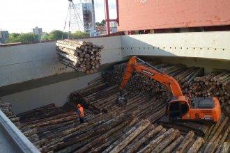 Argentina despachó el segundo embarque de pino a China por un puerto entrerriano