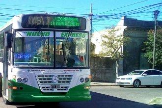 Boleto del transporte: Concejal denuncia intereses políticos y económicos que frenan la SUBE