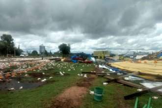 La tormenta dejó galpones destrozados y pollos muertos, en granja entrerriana