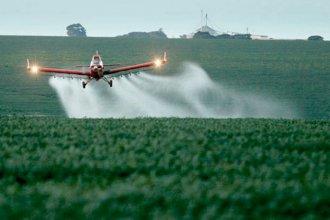 Bordet reglamentó los agroquímicos: habrá unidades de control cerca de escuelas y comunidades rurales