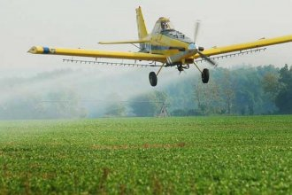 Ecologistas advierten que las fumigaciones con agrotóxicos incrementarán durante el verano
