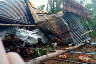 Techos volados, árboles y postes caídos: hubo fuerte temporal en el sur entrerriano