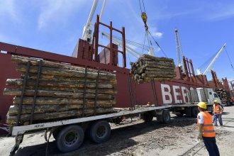 Amarró al puerto el buque que llevará 20 mil toneladas de madera a China