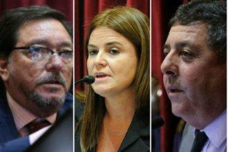 Senadores nacionales entrerrianos tuvieron asistencia perfecta en 2018