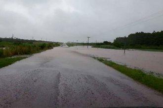 Rutas cortadas y arroyos desbordados: evacuan familias en dos localidades entrerrianas