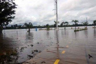 """Encaran nuevas """"evacuaciones preventivas"""" por la crecida del Río Uruguay"""