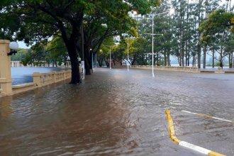 Sexto día de buenas señales: el río Uruguay seguirá con su tendencia a descender