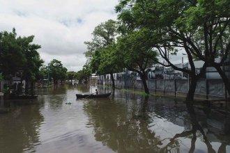 """Video: El """"Museo de la Inundación"""", inundado"""
