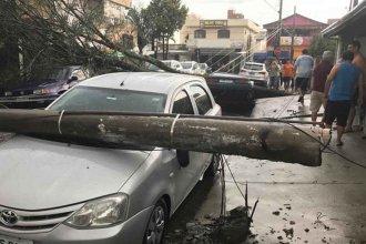 El temporal no reconoce fronteras: Cayeron árboles y postes en Brasil y el norte uruguayo sigue en alerta amarilla