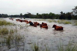 Los alcances de la emergencia hídrica para Entre Ríos