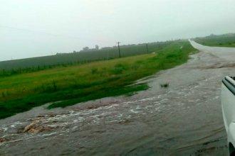 Las lluvias provocaron anegamientos y dificultan el tránsito en rutas entrerrianas