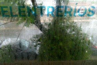 Pronostican más lluvias pero el río se mantendrá estable en Concordia, Colón y Concepción del Uruguay