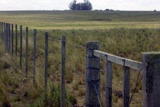 Actualización del Inmobiliario Rural: el campo rechazó el 40% que propuso el gobierno