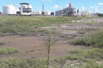 La presencia de charcos aceitosos y con olor químico cerca de las fábricas alerta a los vecinos de Nogoyá