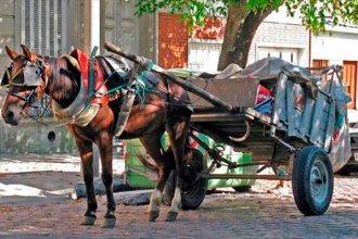 Cayó del carro y el caballo le dio una patada en la cabeza
