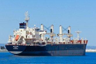 Llega un nuevo buque al puerto de Concepción del Uruguay para llevar madera a China