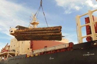 """Dos nuevos buques ingresarán al puerto de """"la histórica"""" para cargar madera"""
