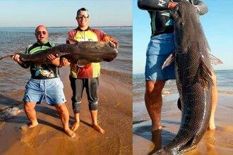 Capturaron un surubí gigante de más de 60 kilos en las aguas del Paraná