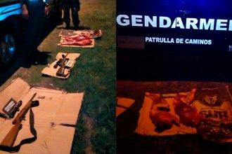 Gendarmería incautó pescados y un ciervo faenado durante un operativo