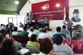 """Un sector del radicalismo rechaza """"actitudes antidemocráticas"""" de dirigentes provinciales"""