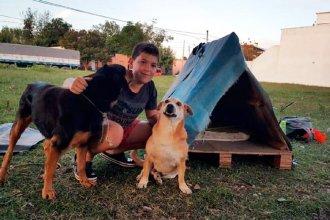 Amor por los animales: tiene 14 años y rescata perros de la calle