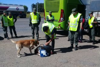 Narco pasajera fue descubierta en Entre Ríos con 11 kilos de marihuana ocultos en un compresor