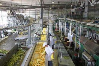 ¿Cuántas hectáreas entrerrianas están destinadas a la actividad industrial?