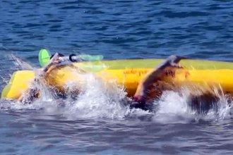 Guardavidas rescataron a pescadores que naufragaron en aguas del lago de Salto Grande