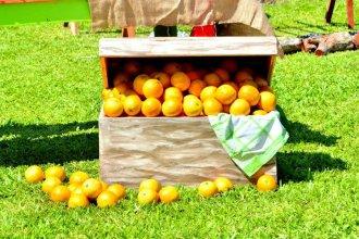 """""""Con un poco de conflicto para ingresar la fruta"""", citricultores ya están en CABA para el frutazo"""