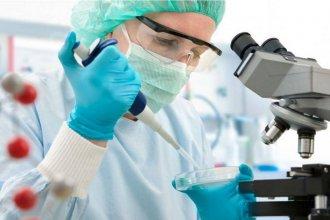 Ciencia en crisis: aseguran que hay dificultades para sostener la investigación científica