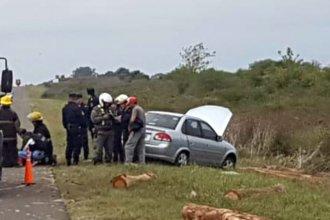 Troncos de eucaliptus golpearon un auto en plena ruta y tres personas fueron hospitalizadas