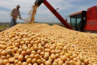 Un informe muestra cómo fue la participación de Entre Ríos en las exportaciones nacionales