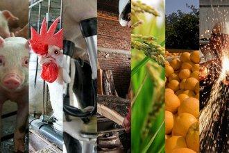La crisis se profundiza: el 67% de las industrias entrerrianas bajó su producción y ventas