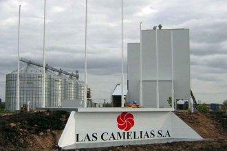 Empresa avícola entrerriana proyecta aumentar un 15% su capacidad de producción