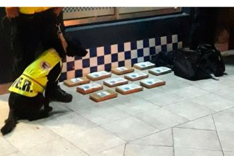 Transitaba por la ruta en colectivo con droga escondida en dos bolsos