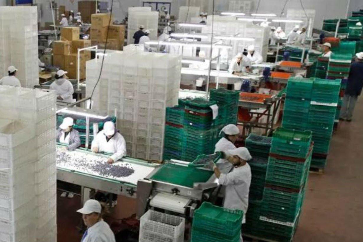 En Concordia está la planta de la empresa.