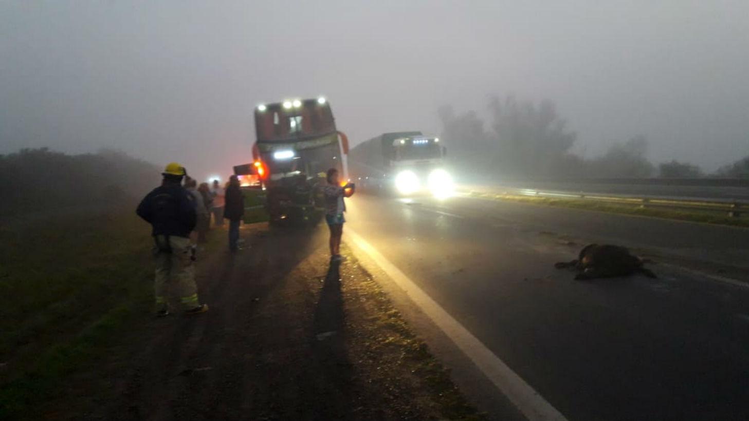 El colectivo Tigre Iguazú protagonizó el choque.