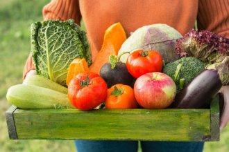 Ciudad entrerriana deberá ofrecer mensualmente productos orgánicos y regionales a sus vecinos