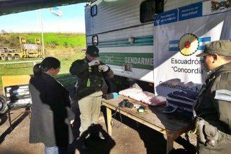 """Con ayuda de """"Guli"""", Gendarmería detectó casi 5 kilos de droga en el cruce de las rutas 14 y 18"""